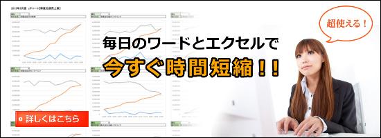 情報技術ライダー